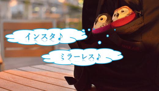 【ミラーレス一眼】インスタ写真におすすめなミラーレスランキング!自撮りも出来ちゃう!