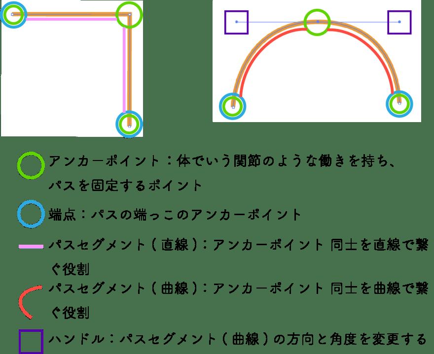 イラレ のパスの構成要素