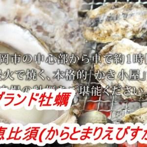 唐泊恵比須(からとまりえびすかき)かき