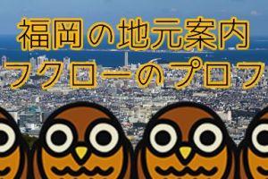 owl_job