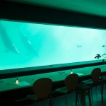 PHANTOM CAFE @OTARU AQUARIUM