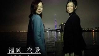 福岡市に夜景の新スポット!大濠公園の「中の島」のライトアップ