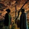 福岡の桜の名所・桜鑑賞人気スポットランキング