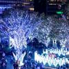 【JR博多シティ】博多駅前広場クリスマスイルミネーション2018人気撮影スポットまとめ