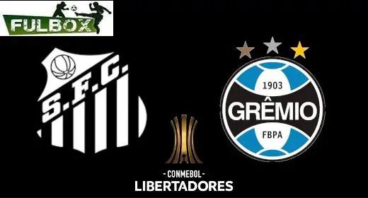 Santos vs Gremio