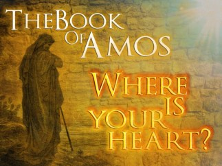 where-is-your-heart-book-of-amos