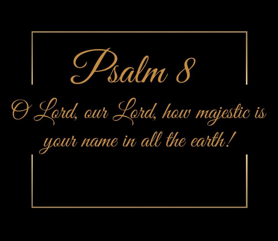 Psalm Eight Gold Box a