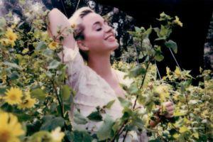 Katy Perry daisies 歌詞