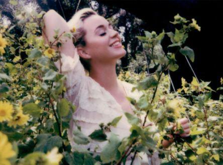 Katy Perry – Daisies | 歌詞翻譯與歌曲介紹