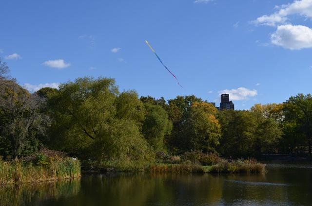 Kite Flying in Central Park