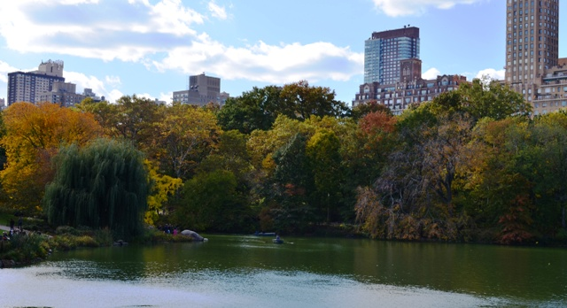 Fall Colors in Manhattan's Central Park