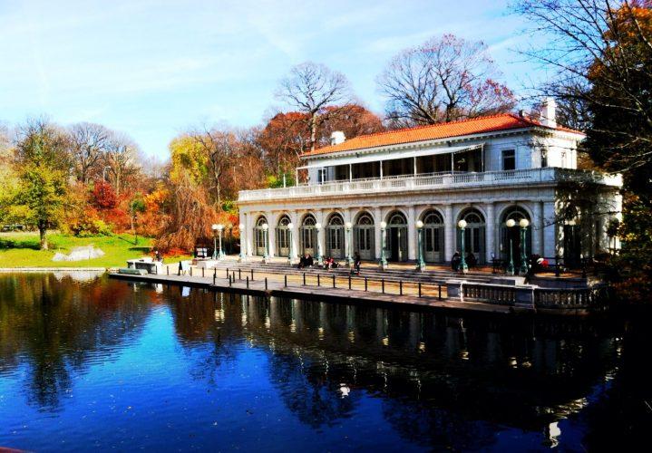 Pond in New York City