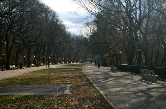 South Facing Walking Path in Riverside Park