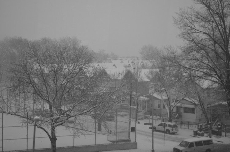 Queens on a Snowy Day