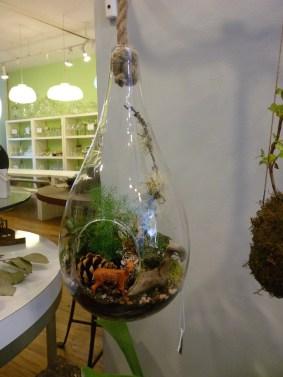 Twig Hanging Terrarium