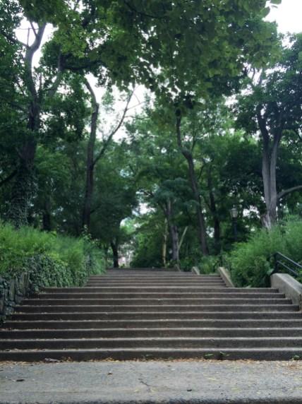 Ascending Stairs in Morningside Park