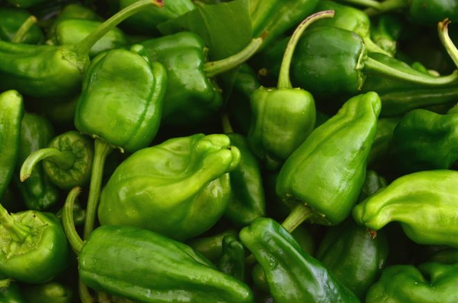 Peppers de Padron at the Green Market