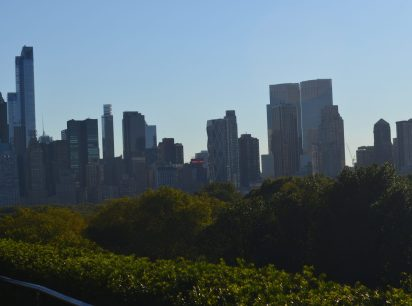 NYC skyline from the roof of the Met