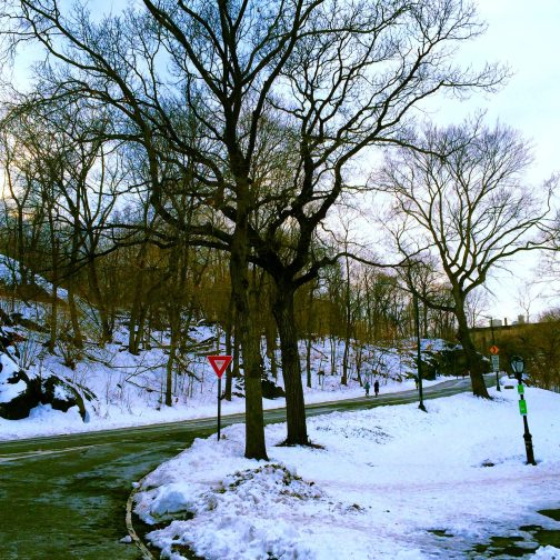 North Side of Central Park