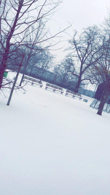 Winter in Bushwick