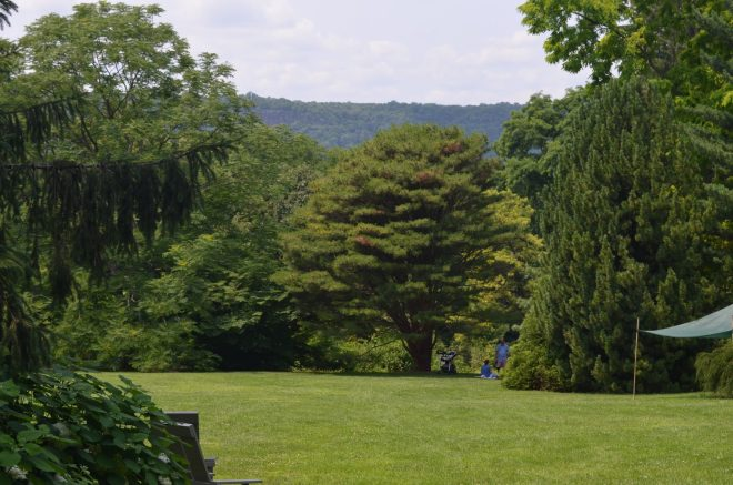 The Grounds at Wave Hill