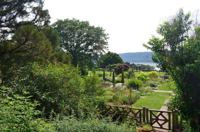 Wild Flower Garden at Wave Hill