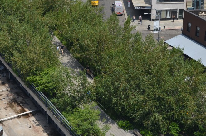 Highline View from the Whitney