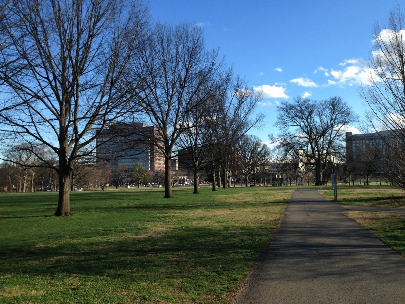 Walking Path Centennial