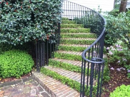 Charleton House Stairs