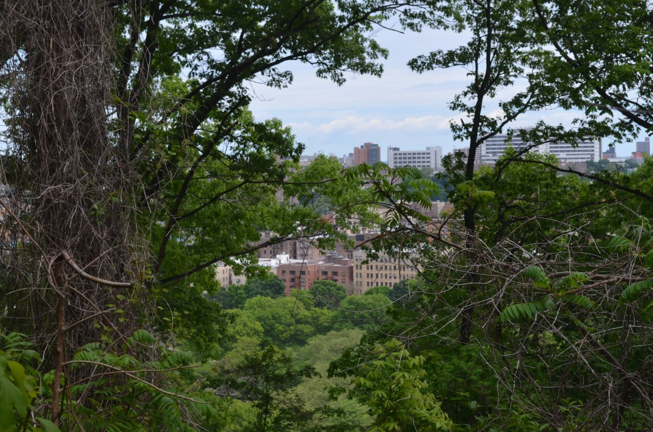 View of Manhattan from Inwood Hill Park