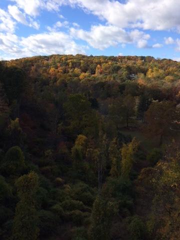 fall-at-croton-gorge-park