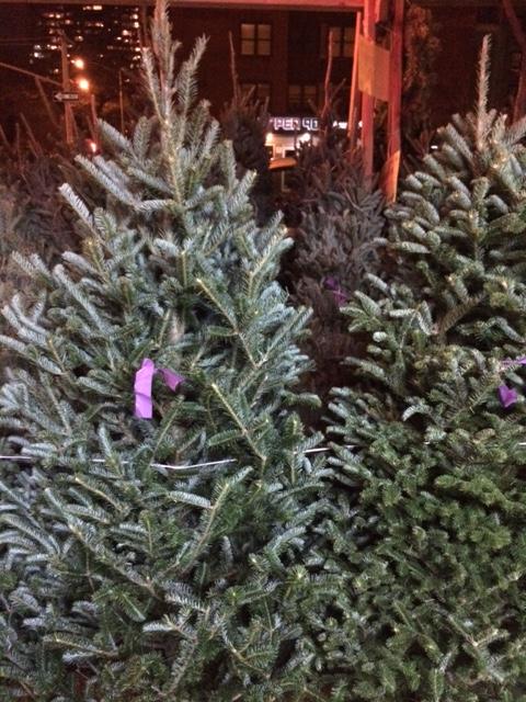 christmas-tree-lot-in-new-york-city