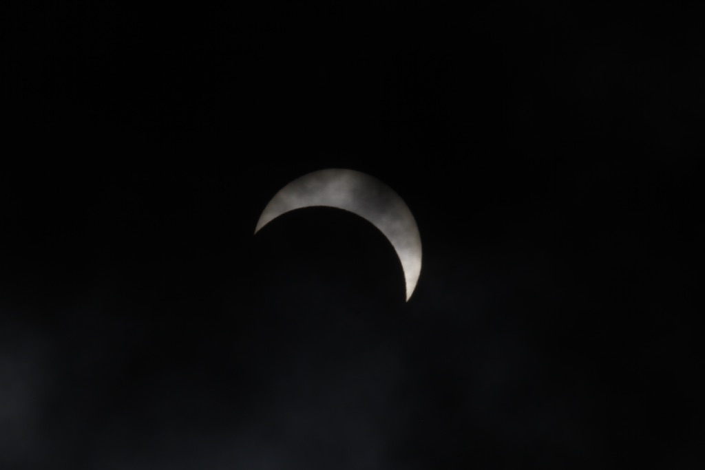Partial Eclipse of the Heart (4)