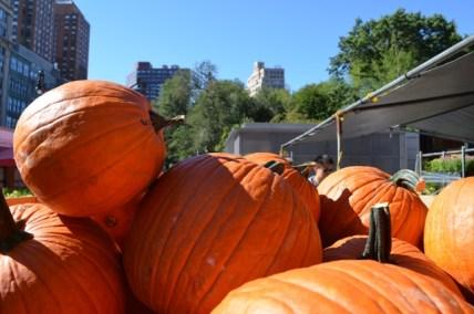 Union Square Greenmarket Pumpkins