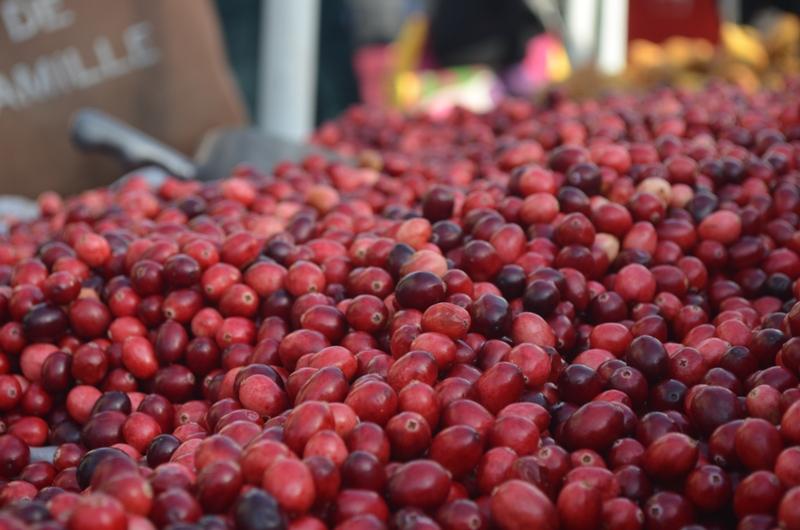 Winter Farmer's Market in Union Square 3