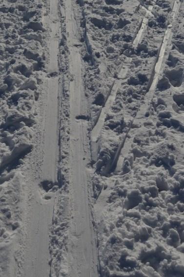 Cross Country Ski Tracks in Central Park