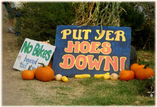 hoes-down_slide7