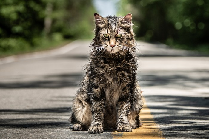 "'Pet Sematary' Review: ""A Top-Tier King Adaptation"""