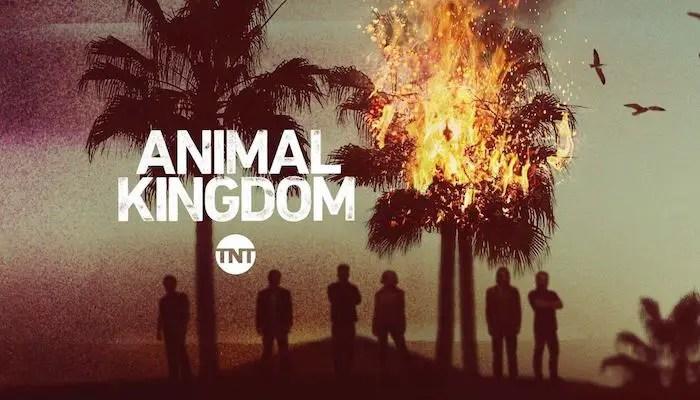 'Animal Kingdom' S5, Ep4 - 'Power' Review