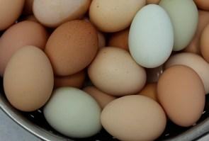 beautiful beautiful eggs
