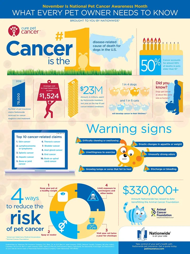 Nationwide Pet Insurance Pet Cancer Awareness Infographic