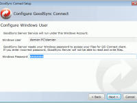 GoodSync for Windows