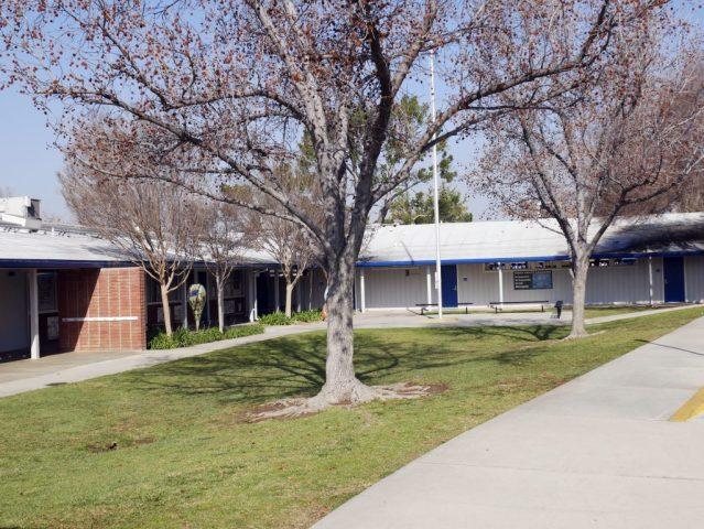 Fern Drive Elementary