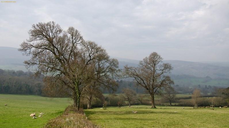 Exmoor in Devon, England