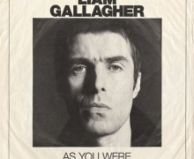 "David Hasselhoff, ""Liam Gallagher. Why trash your brother Noel Gallagher?"""