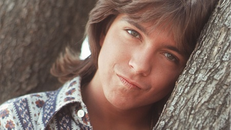 "UPDATED: David Cassidy in Critical Condition ""It's looking grim"", Organ Failure, Liver Transplant"