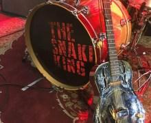 Rick Springfield: Luna Guitars Steel Magnolia