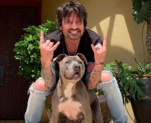 Tommy Lee w/ Cesar Millan – Cesar's Way – Dog Whisperer