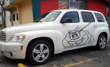 large bulldog graphics on car