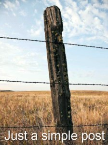 "Just a ""simple post"" fence post"